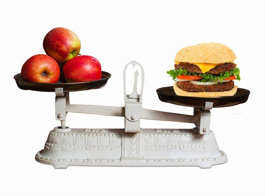 Alimentación en el organismo